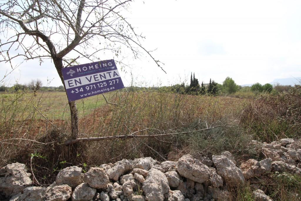 Solar urbano en Algaida. Terreno en venta en algaida, no edificable.