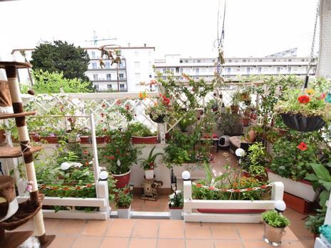 Pisos de alquiler con terraza en Tarragona Provincia