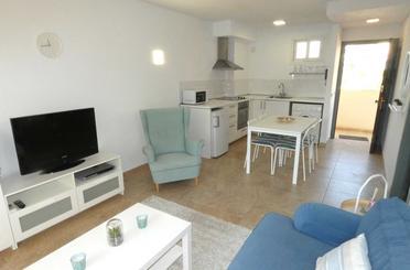 Wohnungen miete in Magaluf - Palmanova - Badia de Palma
