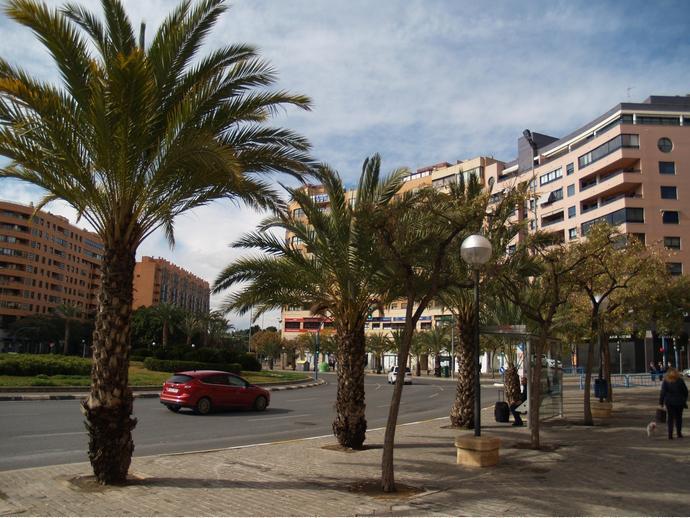 Foto 50 de Piso en Plaza Alcalde Agatángelo Soler 4 / Garbinet, Alicante / Alacant