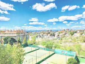 Pisos en venta en Madrid, Zona de