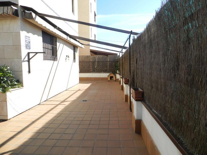 Foto 2 de Planta baja en Paseo De La Democracia / Parque Cataluña - Cañada - Soto, Torrejón de Ardoz