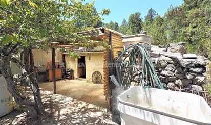 Finca rústica en venta en La Vega - El Amparo - Cueva del Viento