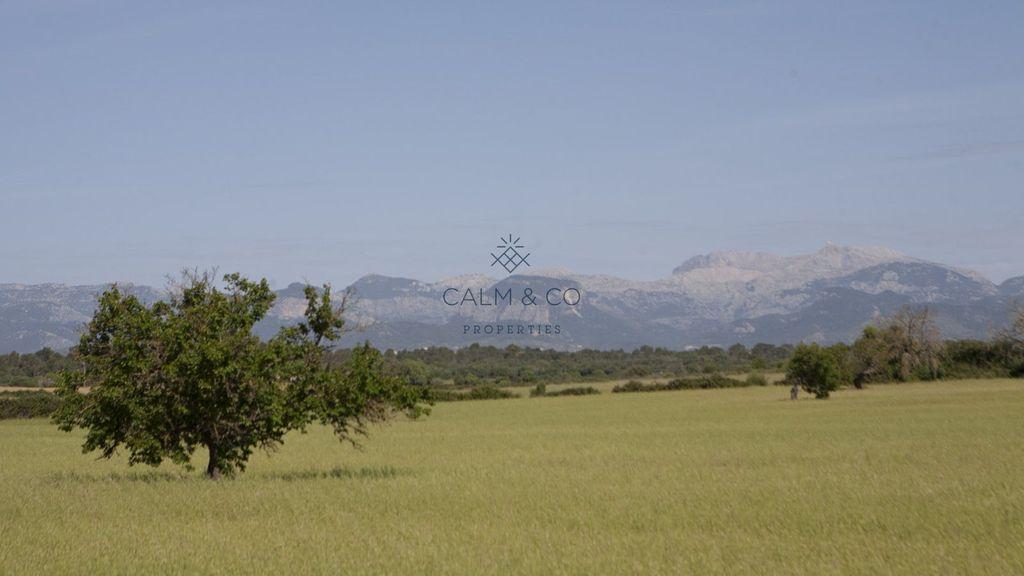 Solar urbano  14- carretera de palma a sineu. Este terreno rural de 31.900 m2 en sencelles con fantásticas vis