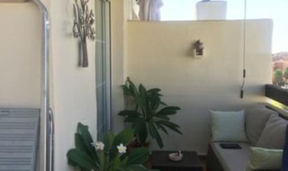 Ático de alquiler en Avenida de Cibeles, Monterrey - Rancho Domingo