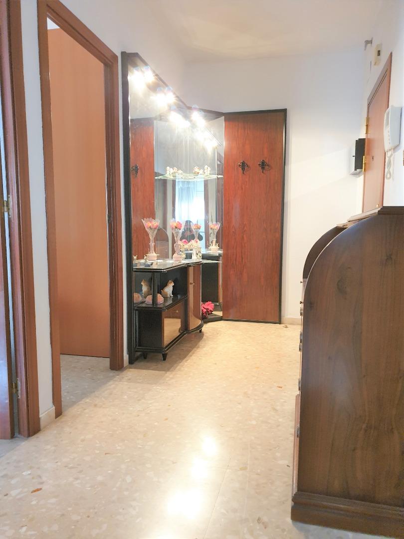 Lloguer Pis  Centre - sant josep - sanfeliu - centre