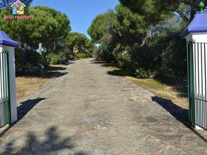 Fincas Rústicas En Venta Con Terraza En Campo De Gibraltar