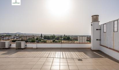 Viviendas y casas en venta en Ogíjares