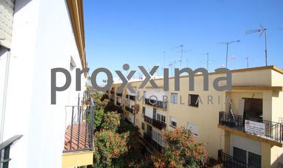 Homes to rent at Sevilla Capital