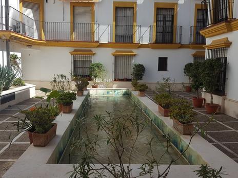 Estudis de lloguer amb ascensor a Sevilla Província