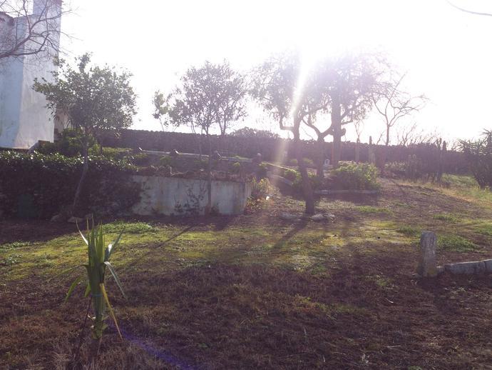 Foto 17 de Finca rústica en Casar De Cáceres, Zona De - Casar De Cáceres / Casar de Cáceres