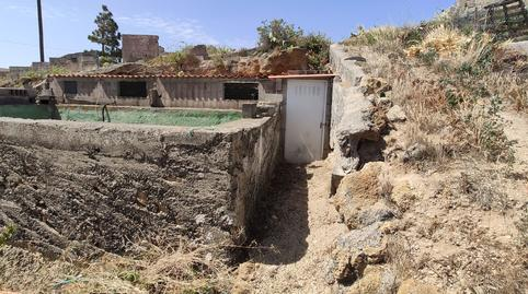 Foto 3 de Finca rústica en venta en Pino Gordo, 7 Fasnia, Santa Cruz de Tenerife