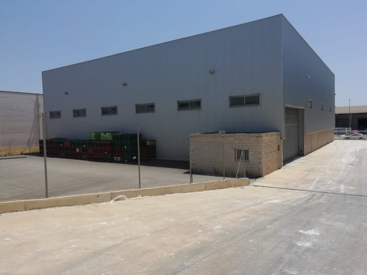 Affitto Capannone industriale  Naquera ,naquera. Nave industrial polígono los vientos