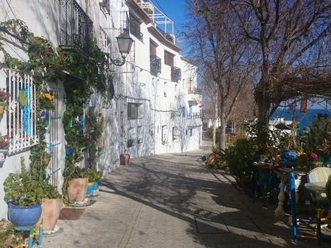 Fincas rústicas de alquiler amuebladas en Alicante Provincia