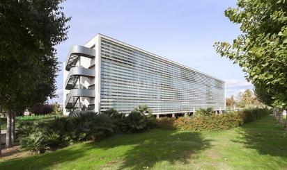 Oficina de alquiler en Catalunya, 83, Torre Roja - Campreciós -  Grup Sant Jordi