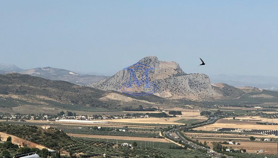 Foto 1 de Piso en venta en Archidona, Málaga