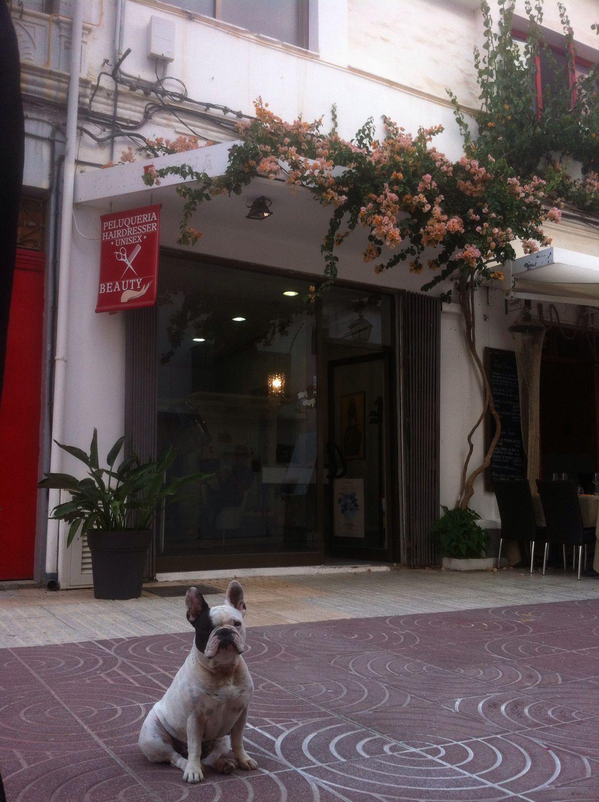 Rental Business premise  07800. Local emblematico en el puerto de Ibiza (zona mercado viejo)