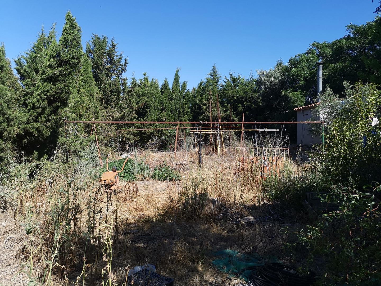 Casa  Alcarràs, zona de - alcarràs. Torre