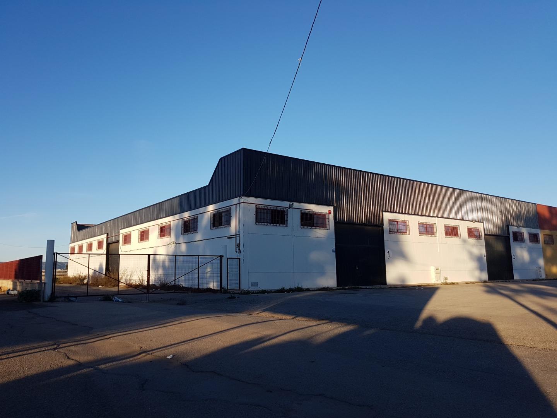 Alquiler Nave industrial  Pedanías oeste - santa ana