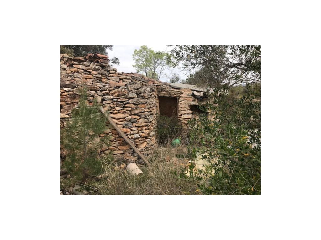 Fincas rústicas de alquiler en Tarragona Provincia