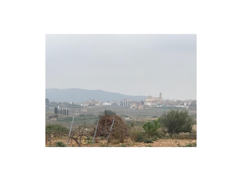 Stadtgrundstück  Valls, Valls, Valls, tarragona, españa. Preciosa finca rústica de 2.800 mtrs2 en nulles, al lado de vall