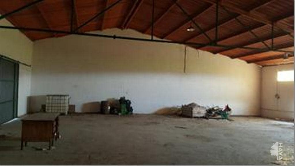 Capannone industriale in Móra d´Ebre. Nave industrial en venta en benissanet (tarragona) mora (de)