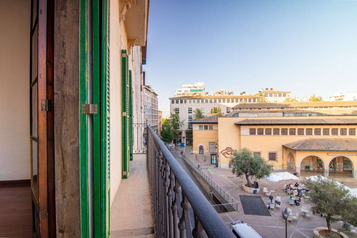 Alquiler Piso  Palma de mallorca ,centro. Magnífico piso en plaza del olivar