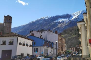 Casa o chalet en venta en La Puente (la Vega), Riosa
