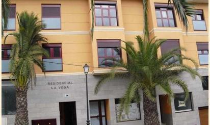 Local de alquiler en Avenida Tinamar, 4, Vega de San Mateo