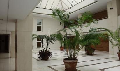 Oficinas de alquiler en Costa Tropical