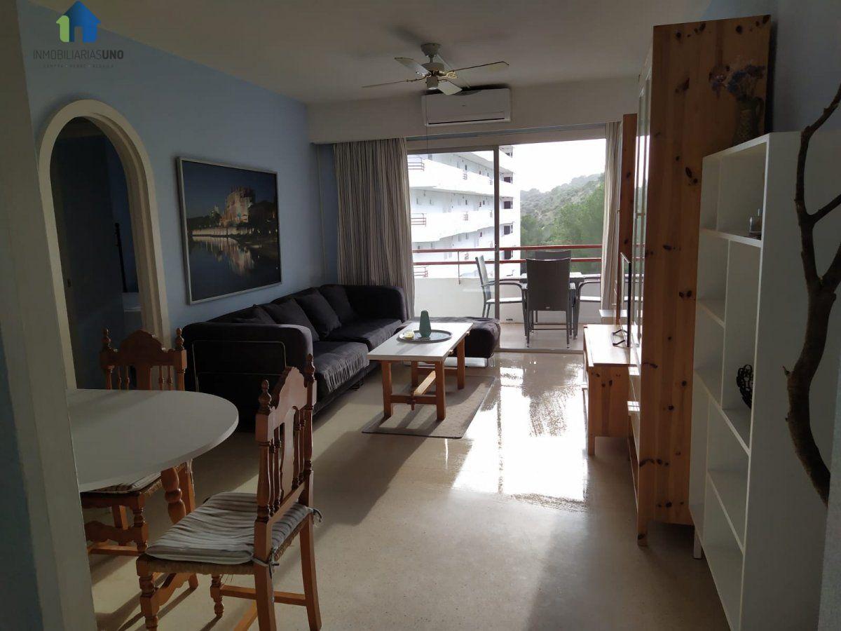 Location Appartement  Alcúdia ,alcúdia. Perfecto apartamento para vivir cerca de montañas!