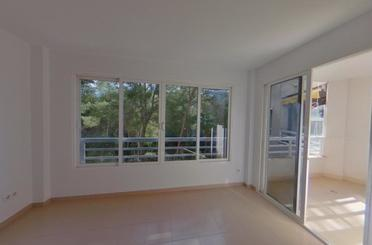 Wohnung miete in Sol (b.palma), Calvià