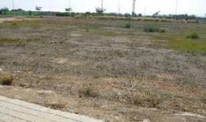 Terrenys en venda a Alfara del Patriarca
