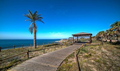 Local de alquiler en  Almería Capital