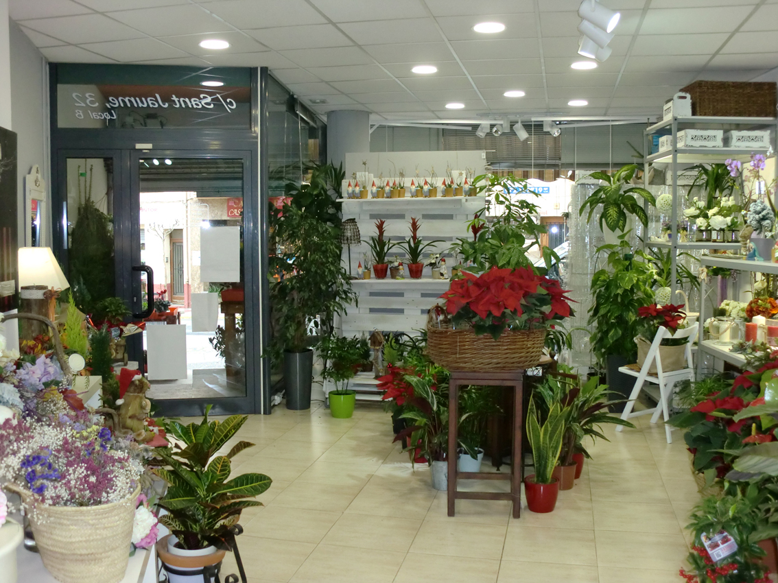 Location Local commercial  Carrer sant jaume, 29