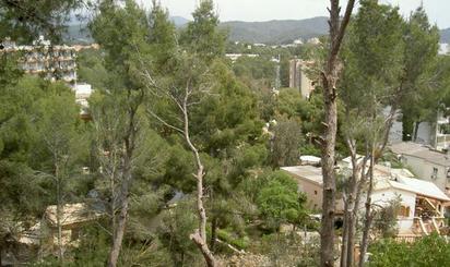 Grundstücke zum verkauf in Peguera