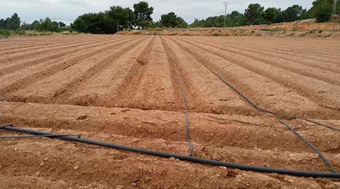Foto 2 de Terreno en venta en Puntal Alt, Pg 26, Parte Parcela 483 Casco Urbano, Valencia