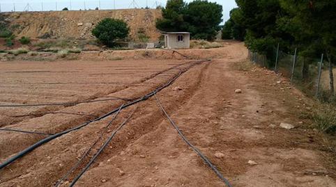 Foto 4 de Terreno en venta en Puntal Alt, Pg 26, Parte Parcela 483 Casco Urbano, Valencia