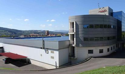 Nave industrial en venta en Barrio Arteaga, Derio