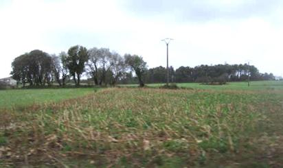 Terreno en venta en Gatiñeira-portonasanchas (bembibre),pg 502 Pc 462, Val do Dubra