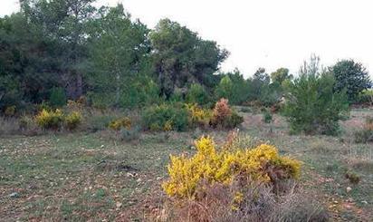Terrenos en venta en Vilamarxant