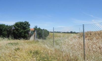 Terreno en venta en Nogal -13b-, Serracines