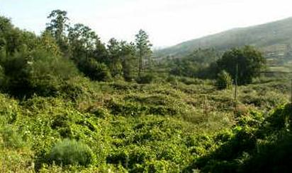 Terrenos en venta en Pontevedra Capital