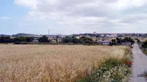 Foto 2 von Grundstücke zum verkauf in Son Afiola, Polígono 2, Parcela 406- Santa Margalida, Illes Balears