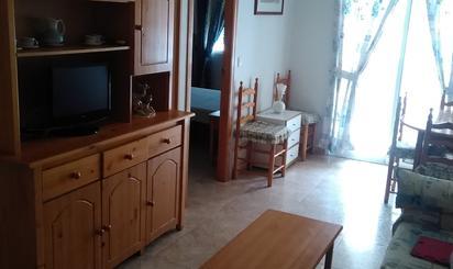 Wohnimmobilien miete Ferienwohnung in Torrevieja