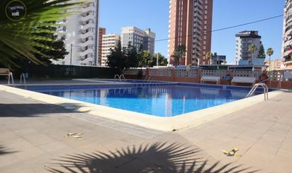 Lofts de alquiler en Alicante Provincia