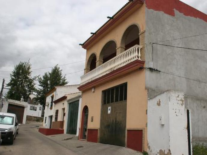 Foto 2 de Piso en Guadiamar - Nº5b Aznalcázar