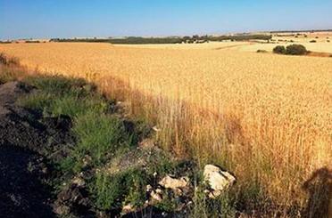 Terreno en venta en Cantales S/n, Poligo 7, Parcela 75, Sarracín