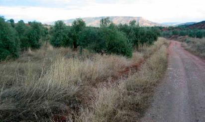 Terreno en venta en Paraje Pajarejo -, Vilches