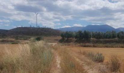 Terreno en venta en Partida de la Serna, Polig 6, Parc 66, Grisel